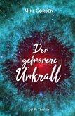 Der gefrorene Urknall (eBook, ePUB)