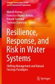 Resilience, Response, and Risk in Water Systems