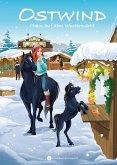 Chaos auf dem Wintermarkt / Ostwind für Erstleser Bd.8