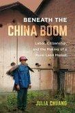 Beneath the China Boom