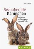 Bezaubernde Kaninchen (eBook, ePUB)