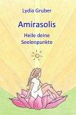 Amirasolis: Heile deine Seelenpunkte (eBook, ePUB)