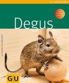 Degus (Mängelexemplar)