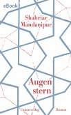 Augenstern (eBook, ePUB)