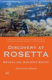 Discovery at Rosetta (eBook, ePUB)