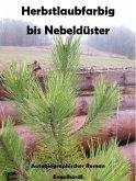 Herbstlaubfarbig bis Nebeldüster (eBook, ePUB)