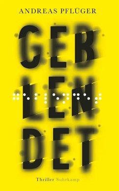 Geblendet / Jenny Aaron Bd.3 - Pflüger, Andreas