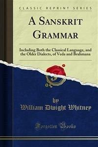 A Sanskrit Grammar (eBook, PDF)
