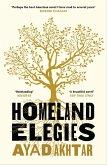 Homeland Elegies (eBook, ePUB)