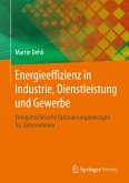 Energieeffizienz in Industrie, Dienstleistung und Gewerbe (eBook, PDF)
