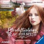 Calypsos Fohlen / Pferdeflüsterer Academy Bd.6 (MP3-Download)
