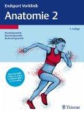 Endspurt Vorklinik: Anatomie 2 (eBook, PDF)