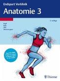 Endspurt Vorklinik: Anatomie 3 (eBook, ePUB)