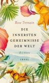 Die innersten Geheimnisse der Welt (eBook, ePUB)