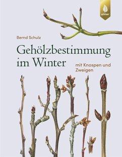 Gehölzbestimmung im Winter - Schulz, Bernd