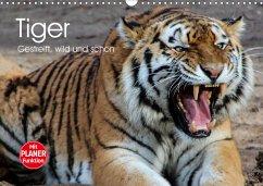 Tiger. Gestreift, wild und schön (Wandkalender 2021 DIN A3 quer)