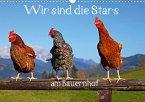 Wir sind die Stars am Bauernhof (Wandkalender 2021 DIN A3 quer)