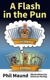 A Flash in the Pun (eBook, ePUB)