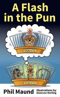 A Flash in the Pun (eBook, ePUB) - Maund, Phil