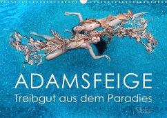 ADAMSFEIGE - Treibgut aus dem Paradies (Wandkalender 2021 DIN A3 quer)