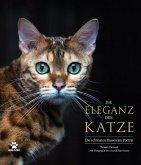 Die Eleganz der Katze
