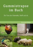 Gummistrapse im Bach (eBook, ePUB)