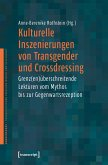 Kulturelle Inszenierungen von Transgender und Crossdressing (eBook, PDF)