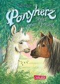 Ponyherz findet einen Freund / Ponyherz Bd.16 (eBook, ePUB)