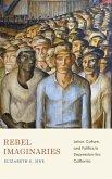 Rebel Imaginaries