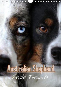 Australian Shepherd - Beste Freunde (Wandkalender 2021 DIN A4 hoch)