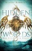 Der Kompass im Nebel / Hidden Worlds Bd.1