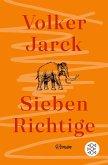 Sieben Richtige (eBook, ePUB)