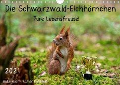 Die Schwarzwald-Eichhörnchen (Wandkalender 2021 DIN A4 quer)