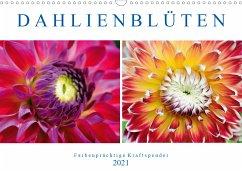 Dahlienblüten - Farbenprächtige Kraftspender (Wandkalender 2021 DIN A3 quer)