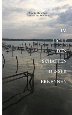 Im Licht den Schatten besser erkennen (eBook, ePUB)