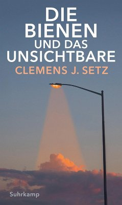 Die Bienen und das Unsichtbare (eBook, ePUB) - Setz, Clemens J.