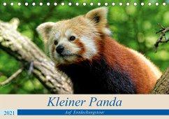 Kleiner Panda auf Entdeckungstour (Tischkalender 2021 DIN A5 quer)