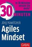 30 Minuten Agiles Mindset