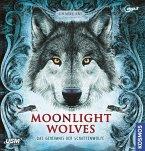 Moonlight Wolves, Das Geheimnis der Schattenwölfe