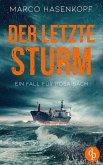Der letzte Sturm (eBook, ePUB)