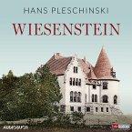 Wiesenstein (MP3-Download)
