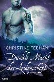Dunkle Macht der Leidenschaft / Dark Carpathians Bd.33