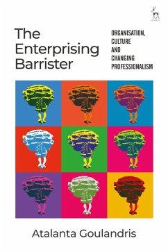 The Enterprising Barrister (eBook, PDF) - Goulandris, Atalanta