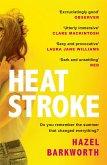 Heatstroke (eBook, ePUB)