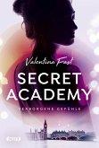 Verborgene Gefühle / Secret Academy Bd.1 (eBook, ePUB)