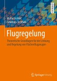 Flugregelung (eBook, PDF)