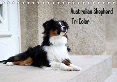 Australian Shepherd Tri Color (Tischkalender 2021 DIN A5 quer)