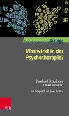 Was wirkt in der Psychotherapie? (eBook, ePUB)