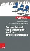 Psychosoziale und traumapädagogische Arbeit mit geflüchteten Menschen (eBook, ePUB)
