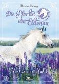 Wiehern im Wald / Die Pferde von Eldenau Bd.4